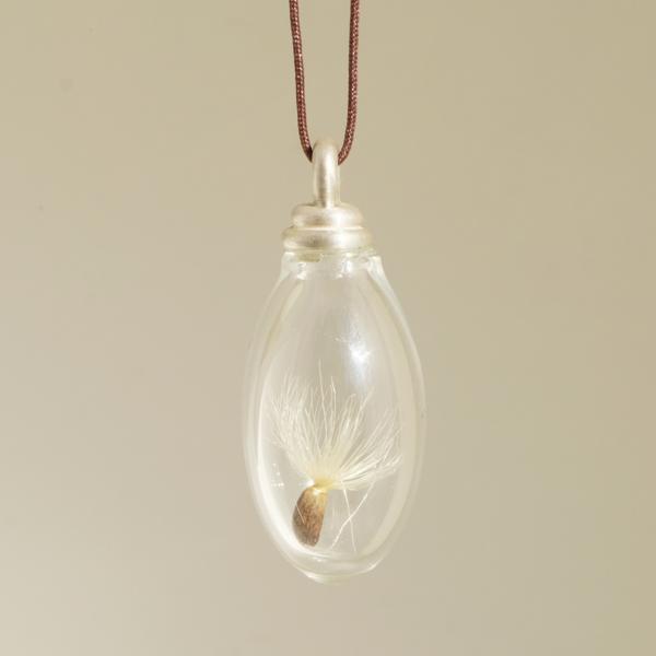 Phiole mit dem Samen einer Mariendistel von Angelika Brinkmann